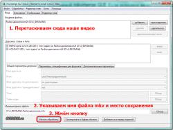 программа mkvmerge GUI
