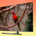 TCL X10, TCL X81, TCL EC78 — телевизоры 2019 года